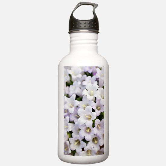 Bellflowers (Campanula Water Bottle