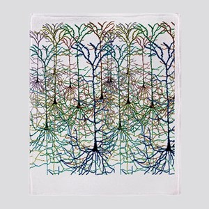More Neurons Throw Blanket