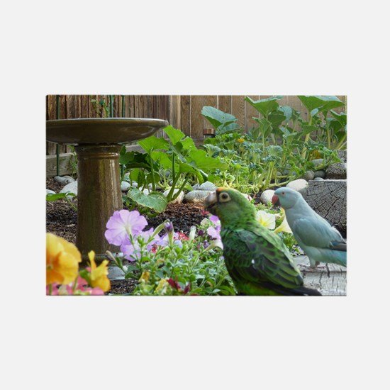 Parrots in the Garden Rectangle Magnet