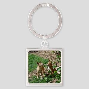 dingo puppies Square Keychain