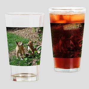 dingo puppies Drinking Glass