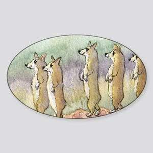 Corgi dogs having a meerkat moment Sticker (Oval)
