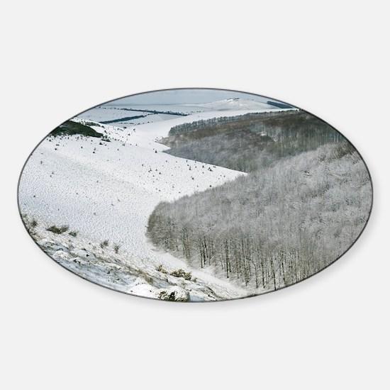 Snowy landscape, Dorset Sticker (Oval)