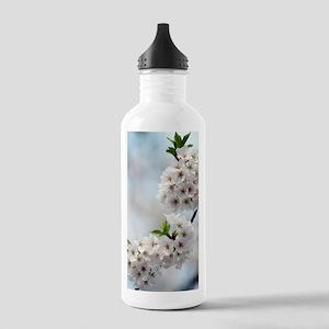 Yoshino cherry (Prunus Stainless Water Bottle 1.0L