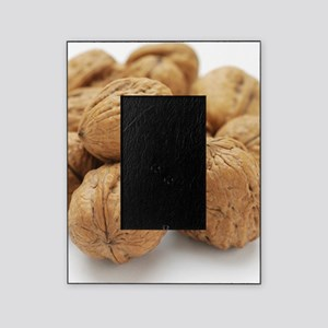 Walnuts Picture Frame