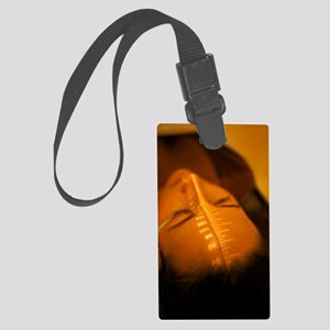 Radiotherapy Large Luggage Tag