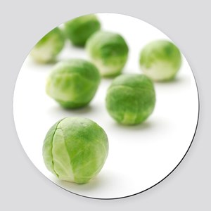 Brussels sprouts Round Car Magnet