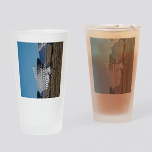 (12p) Very Large Array 7511 Drinking Glass