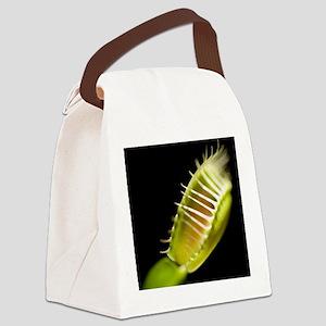 Venus flytrap (Dionaea muscipula) Canvas Lunch Bag