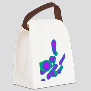 Tuberculosis bacteria, artwork Canvas Lunch Bag