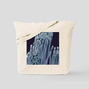 Toothbrush bristles, SEM Tote Bag