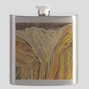 Tendon fibres, SEM Flask