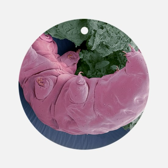 Tardigrade, SEM Round Ornament
