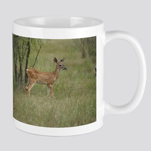 Whitetail Fawn In Pasture Mugs