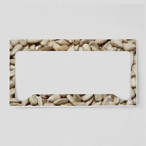 Sunflower seeds License Plate Holder