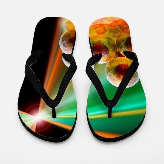 Stem cell research, conceptual artwork Flip Flops
