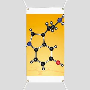 Serotonin neurotransmitter molecule Banner