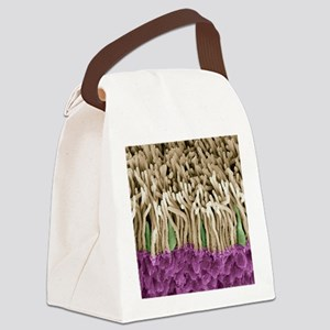 Retina rods and cones, SEM Canvas Lunch Bag