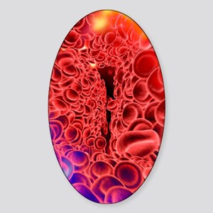 Red blood cells, computer artwork Sticker (Oval)