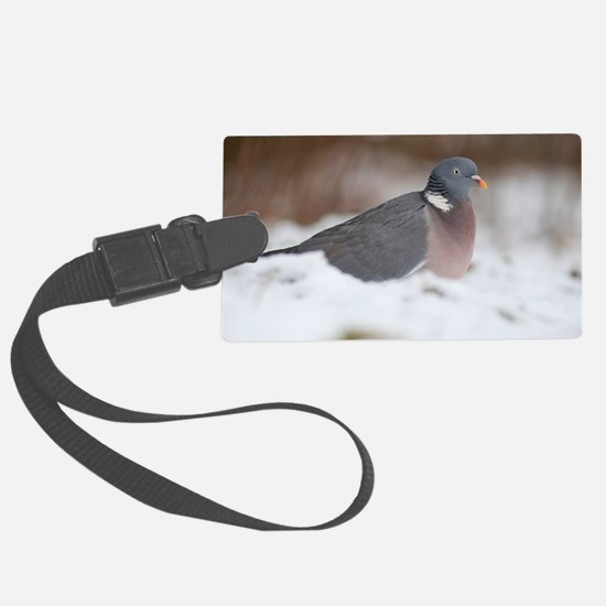 Wood pigeon in snow Luggage Tag