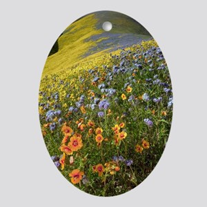 Wildflowers, California Oval Ornament