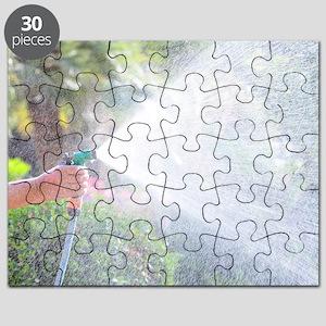 Watering a garden Puzzle