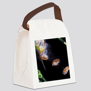 Water flea giving birth Canvas Lunch Bag