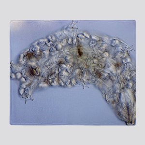Water bear, light micrograph Throw Blanket