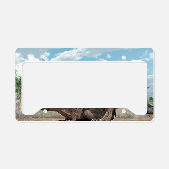 Tyrannosaurus rex dinosaurs m License Plate Holder