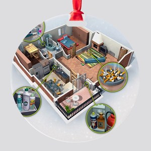 Toxic household chemicals Round Ornament