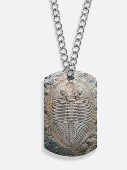 Trilobite fossil Dog Tags