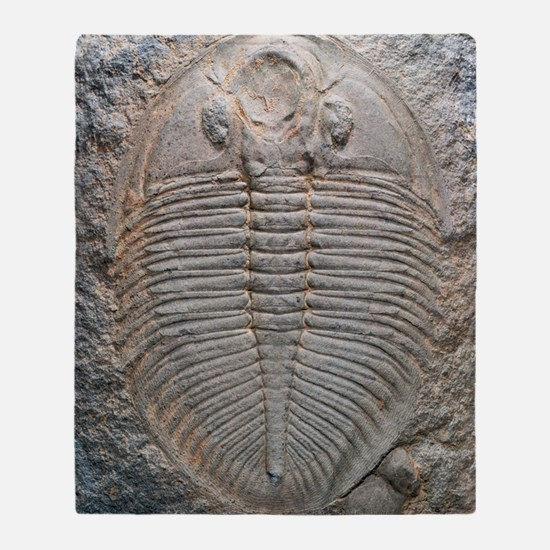 Trilobite fossil Throw Blanket