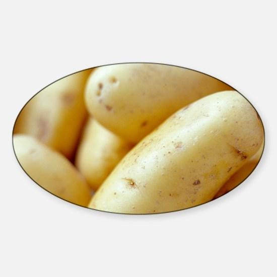 New potatoes Sticker (Oval)