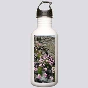 Thrift (Armeria) Stainless Water Bottle 1.0L