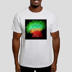 Thale cress stigma, micrograph Light T-Shirt
