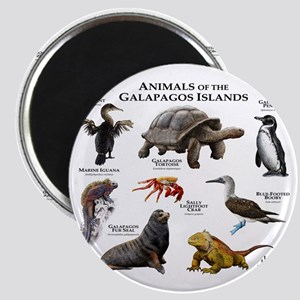 Animals of the Galapagos Islands Magnet
