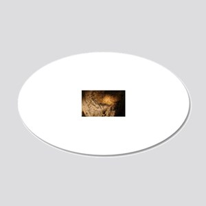 Stone-age cave paintings, La 20x12 Oval Wall Decal