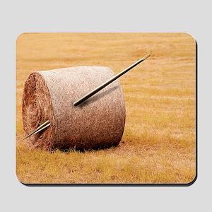 Needle in a haystack, conceptual artwork Mousepad