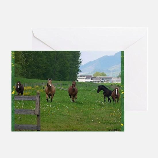 Circle f herd 10 x 8 Greeting Card