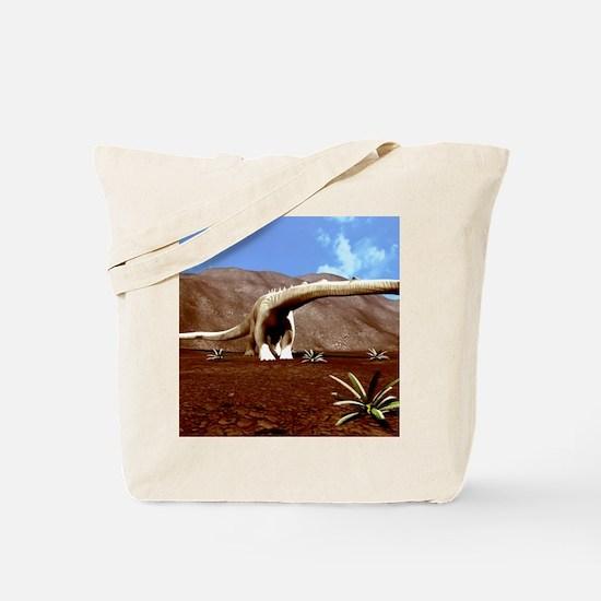 Young Diplodocus dinosaur Tote Bag