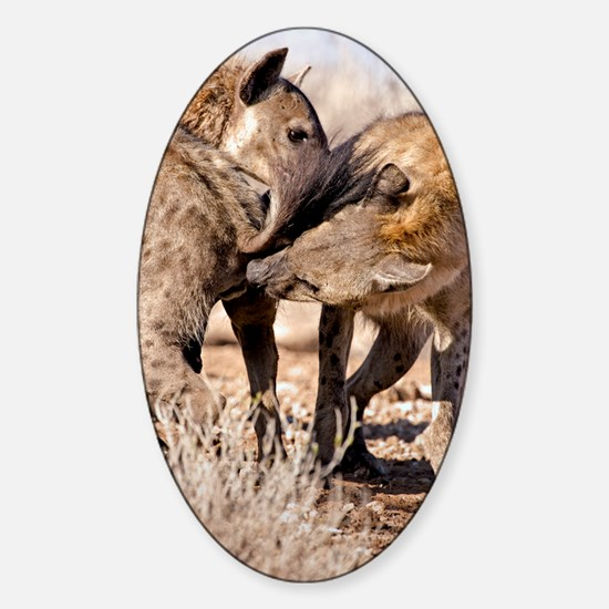 Spotted hyena greeting ritual Sticker (Oval)