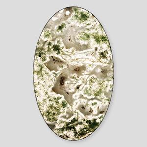 Moss agate Sticker (Oval)