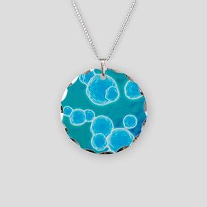 MRSA bacteria, artwork Necklace Circle Charm