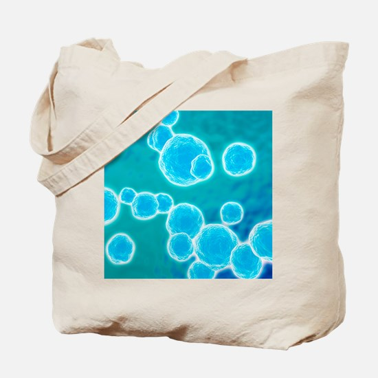 MRSA bacteria, artwork Tote Bag