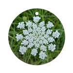 Queen Anne's Lace Ornament (Round)