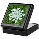 Queen Anne's Lace Keepsake Box