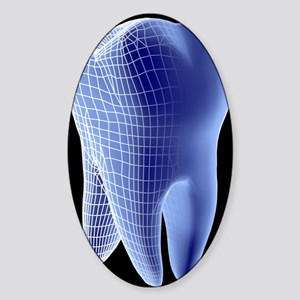 Molar tooth Sticker (Oval)