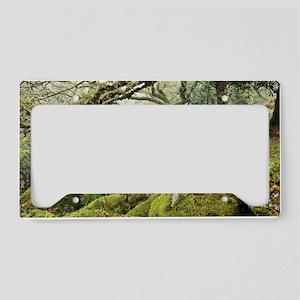 Wistman's Wood, Dartmoor License Plate Holder