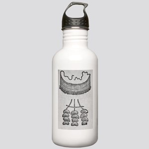 Soursop seeds used as  Stainless Water Bottle 1.0L