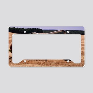 Wheat harvest License Plate Holder